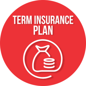 wealth management, term insurance plan
