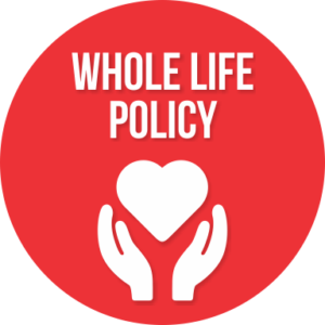 wealth management whole life policy